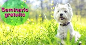 veterinaria-ortomolecular-barcelona